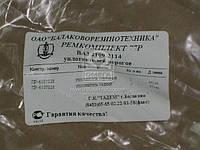 Ремкомплект уплотнителей порогов ВАЗ 2109-099 №77Р (Производство БРТ) Ремкомплект 77Р, ABHZX