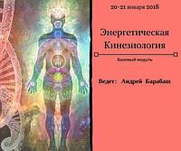 20-21 января Киев Энергетическая кинезиология. Базовый модуль