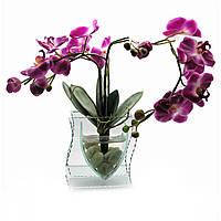 Орхидея в стекле (35х21х8,5 см)