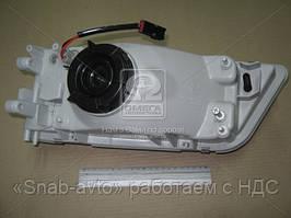 Фара правый NIS MAXIMA 95-00 (Производство DEPO) 215-1174R-LD, AFHZX