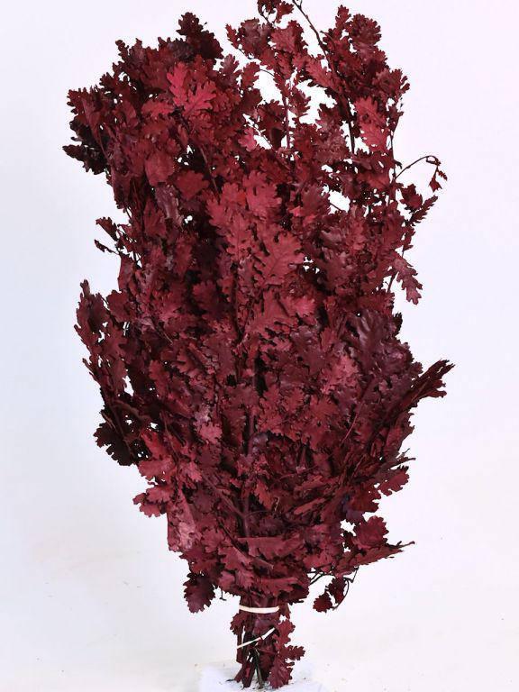 Дубовые листья красные 1кг