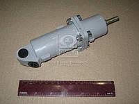 Цилиндр пневматический 35х65 (производство г.Полтава) (арт. 16.3570210), AAHZX