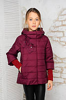 Куртка демисезонная для девочки плащевка лаке с хлопком на холофайбере съемные манжеты и капюшон