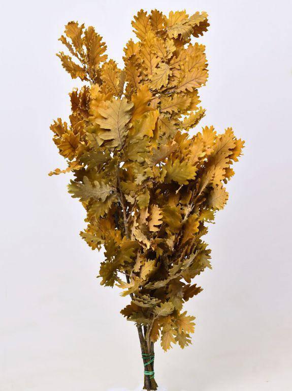 Дубовые листья желтые 50-60 см