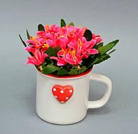 Цветы в вазонах (кружка) SU5401