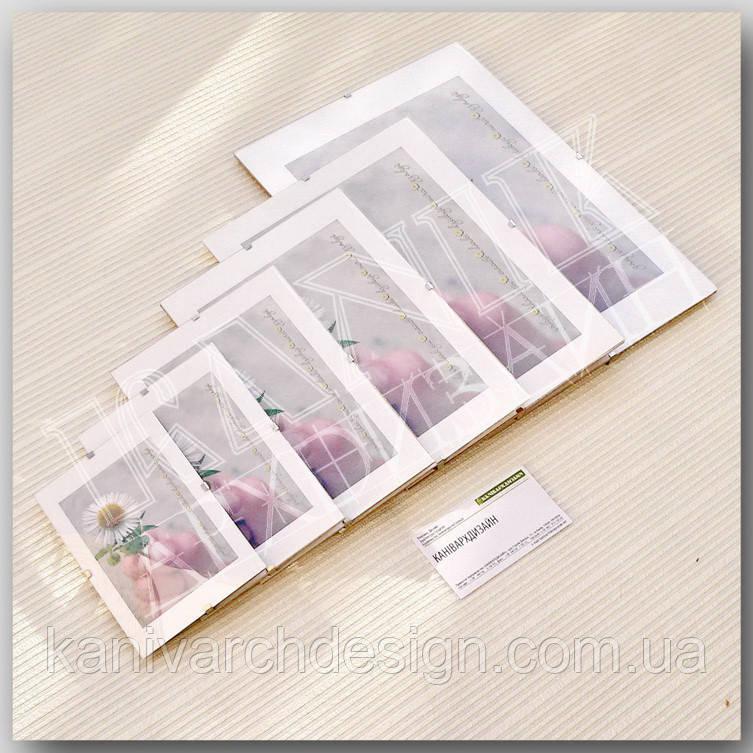 "Антирама 841х1189мм формат А0 антирамка безбагетна клямерна рамка-кліп ""рамка без рамки"", фото 1"