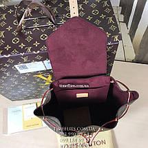 Рюкзак Louis Vuitton №14 , фото 3