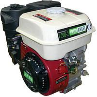 Двигатель бензиновый Iron Angel Е200-2
