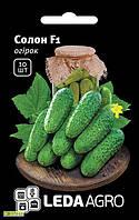Семена огурца Солон F1, 10шт, Yuksel, Турция, семена Леда Агро