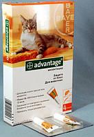 Капли Адвантейдж 40 коты до 4 кг 1шт