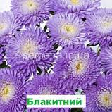 Айстра Арлекін (колір на вибір) 2 г., фото 2