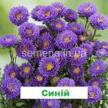 Айстра Арлекін (колір на вибір) 2 г., фото 3
