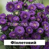 Айстра Арлекін (колір на вибір) 2 г., фото 4