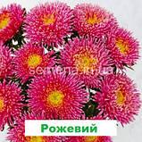 Айстра Арлекін (колір на вибір) 2 г., фото 5