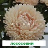 Айстра Бютіфул Дей (колір на вибір) 2 г., фото 2