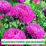 Айстра Бютіфул Дей (колір на вибір) 2 г., фото 3