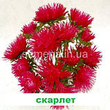 Айстра Валькірія (колір на вибір) 1 г., фото 4