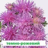 Айстра Валькірія (колір на вибір) 1 г., фото 5