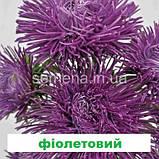 Айстра Валькірія (колір на вибір) 1 г., фото 6