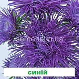 Айстра Валькірія (колір на вибір) 1 г., фото 7
