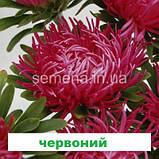 Айстра Дрегон (колір на вибір) 1 г., фото 4