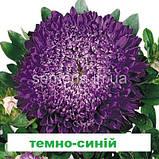 Айстра Матадор на зріз (колір на вибір) 500 шт., фото 8