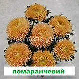 Айстра Сірінга (колір на вибір) 1 г., фото 4