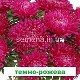 Айстра Сірінга (колір на вибір) 1 г., фото 5