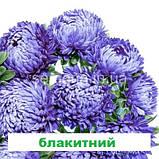Айстра Сірінга (колір на вибір) 1 г., фото 7