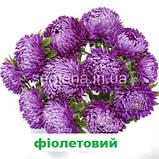 Айстра Сірінга (колір на вибір) 1 г., фото 8