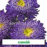 Айстра Шанхайська Троянда (колір на вибір) 1г., фото 7
