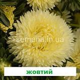 Айстра Леді Корал (колір на вибір) 1г., фото 3