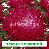 Айстра Ювель (колір на вибір) 2г., фото 3
