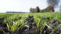 Каталог агрохимикатов