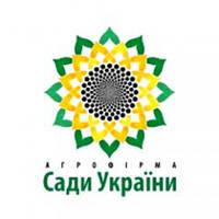 Семена кукурузы НС 2662 ФАО 300 Сады Украины