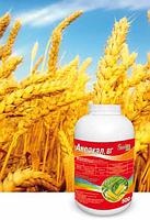 Гербицид Аксакал - Флорасулам 250 г/кг, для кукурузы и злаковых