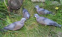 Муляж голубя Горлица (резиновый)