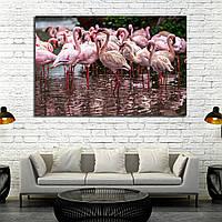 Картина - Розовые фламинго