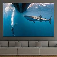Картина - Большая дикая акула