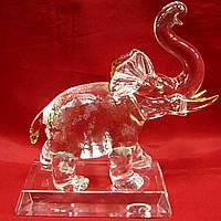 Слон хрусталь (20см)(20х14х7 см)