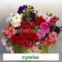 Петунія грандіфлора Суперкаскад F1 (колір на вибір) 1000 шт., фото 1