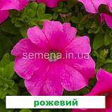 Петунія грандіфлора Суперкаскад F1 (колір на вибір) 1000 шт., фото 3