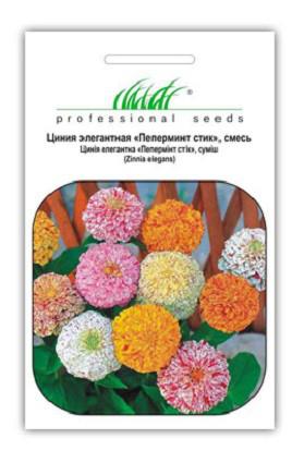 Семена циннии (Майоры) элегантная Пеперминт стик смесь 0,5 г, Hем Zaden