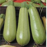 Семена кабачка Сцилли F1 Seminis 500 семян