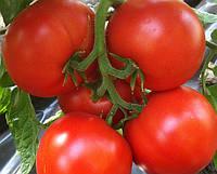 Семена томата Агилис F1 (500 сем.), фото 1