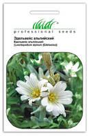 Семена эдельвейс Альпийский белый 0,1 г, Hем Zaden