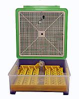 Автоматический инкубатор MS-48, фото 1