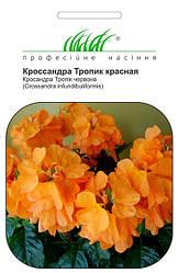 Семена кроссандры Тропик красная 4 шт, Pan American flowers