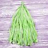 Гирлянды тассел салатовые, 35 см, 5 шт