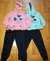 Трикотажный костюм-двойка для девочек  оптом ,Graсe, 98/104-122/128 рр.  арт. G80661, фото 1